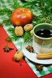 Schale traditioneller Glühwein Lizenzfreie Stockfotos