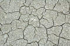 Schalen-Erde Stockfotografie