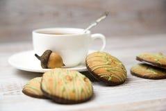 Schalen- und Schokoladensplitterplätzchen auf dem Tisch stockbilder