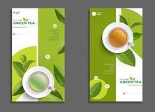 Schalenbroschüre des schwarzen Tees und des grünen Tees, Fahne, verlässt Vektor Lizenzfreies Stockfoto