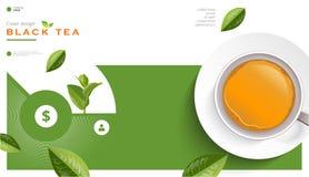 Schalenbroschüre des schwarzen Tees und des grünen Tees, Fahne, verlässt Vektor Lizenzfreies Stockbild