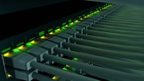 Schalten Sie mit 48 Häfen in einer Servergestellnahaufnahme stock video