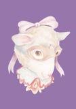 Schapen die nacht buitensporig masker dragen Stock Fotografie