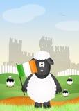 Schapen met Ierse vlag Stock Afbeeldingen
