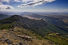 Schapen op de berg Stock Afbeelding
