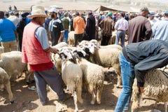 Schapen openluchtmarkt in Marokko Stock Foto