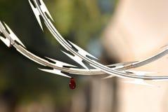 Scharfer Rasiermesser-Drahtzaun mit der Blutstropfenwand sicher stockfoto