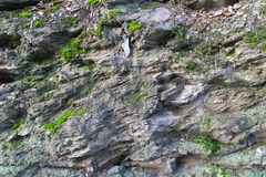 Scharfkantige Felsen mit Moos Stockbild
