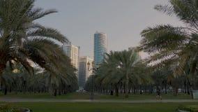 Scharjah, UAE - 10. Mai 2018: bemannen Sie den Läufer, der den Morgen macht, der im Park Al Buheirah Corniche auf Hintergrundgesc stock footage