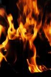 Scharlachrot Feuer einer Flamme Stockfotos
