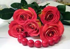 Scharlaken rozen Royalty-vrije Stock Foto