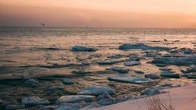 Scharlaken zonsondergang op het overzees met ijsijsschollen in de winter stock videobeelden