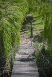 Scharnierende houten brug stock afbeeldingen