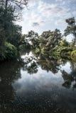 Schatplichtige van de rivier van Olse en Stonavka-in Karvina-stad in Tsjechische republiek met bomen en blauwe hemel met wolken Royalty-vrije Stock Fotografie
