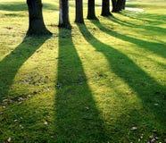 Schatten stockfotos