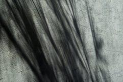 Schatten Lizenzfreie Stockfotografie