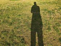 Schatten auf dem Gras archiviert Stockfotos