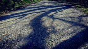 Schatten auf der Straße Stockfotografie