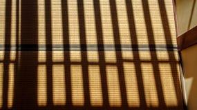 Schatten auf Tatami-Matte Lizenzfreie Stockfotos