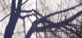 Schatten auf Zaun Lizenzfreie Stockfotografie