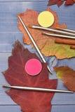 Schatten in den gelben und rosa Farben, die auf Herbstlaub liegen Lizenzfreie Stockfotos