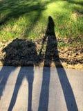 Schatten der Frau und des Hundes Stockbilder