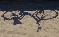 Schatten des Fahrrades im Sand Lizenzfreies Stockfoto
