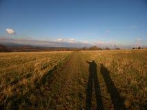Schatten des Mannes und des Sohns auf Rasengelbgrünhintergrund Epty-Feld im Herbst Stockfoto
