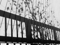 Schatten des Tages Stockfoto