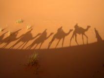 Schatten des Wohnwagens stockfoto