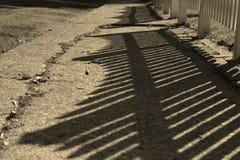 Schatten des Zauns Stockfotografie