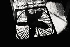 Schatten eines Kasten-Fans auf einem Holzfußboden Lizenzfreies Stockfoto