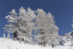 Schatten eines Skifahrers auf einem Skilift Lizenzfreie Stockbilder