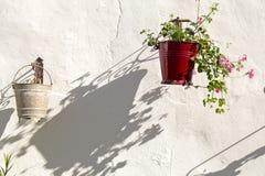 Schatten eines Topfes mit Pelargonie Lizenzfreie Stockfotos