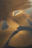 Schatten im Sand Lizenzfreie Stockfotografie