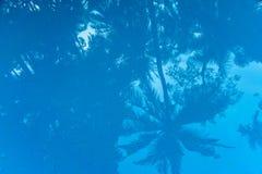 Schatten im Swimmingpool stockfotografie