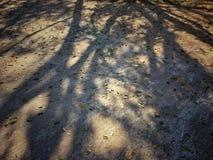 Schatten von Lizenzfreie Stockfotografie