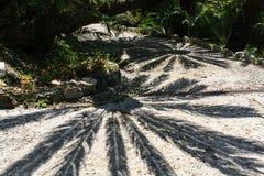 Schatten von Palmblättern Stockfotos
