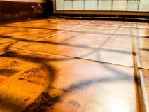 Schatten von Tür ` s Balustrade auf der rotbraunen und schwarzen Steinbruchfliese der Verunstaltung stockfotografie