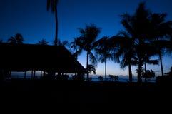 Schattenbild am Abend von Palmen entlang dem Strand stockfotografie