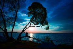 Schattenbild, das von den jungen Frauen sitzen auf dem Baum bei Sonnenuntergang ist lizenzfreies stockfoto