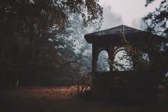 Schattenbild der alten hölzernen Nische im Wald lizenzfreies stockfoto