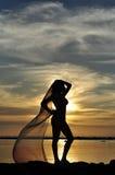 Schattenbild der Dame am Sonnenuntergang. Stockbild