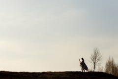 Schattenbild der gebürtigen indischen amerikanischen Frau, die auf Hügel unter geht Stockbild