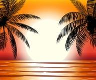 Schattenbild der Palme auf Strand Lizenzfreie Stockfotos