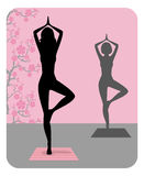 Schattenbild des übenden Yoga der jungen Frau Stockbild