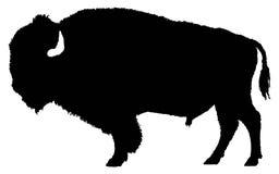 Schattenbild des amerikanischen Bisons Stockbilder