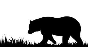 Schattenbild des Bären im Gras Stockbilder