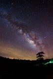 Schattenbild des Baums und der Milchstraße Lange Belichtungsphotographie lizenzfreies stockfoto