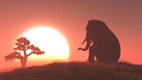 Schattenbild des Elefanten und des Baums Stockfotografie